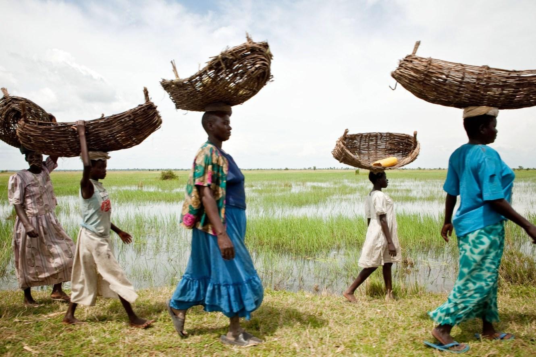 Women and children carry fishing baskets along the shores of Lake Bisinia, Uganda.