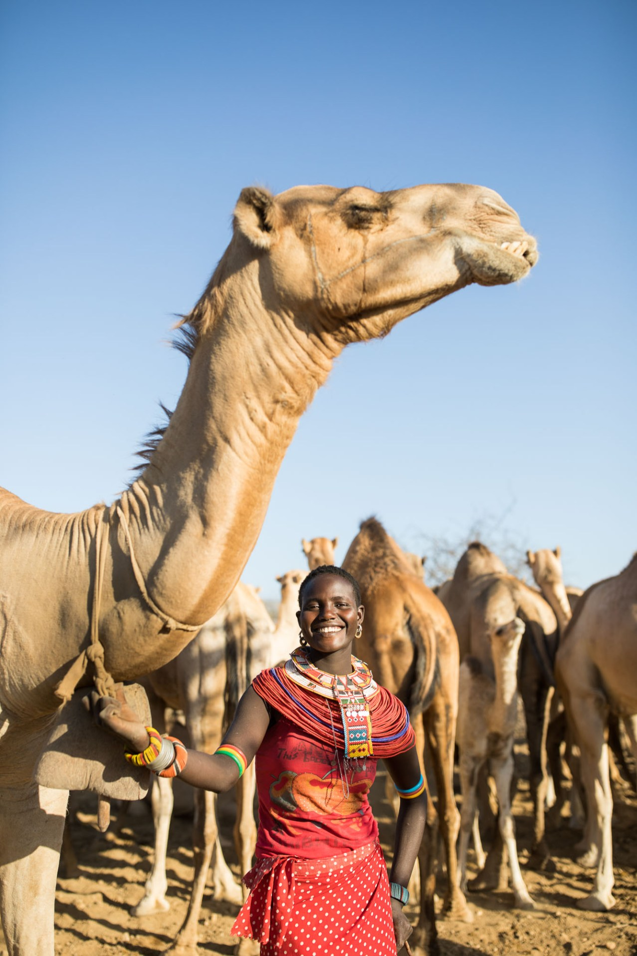 A young woman herds camels in Samburu County, Kenya.