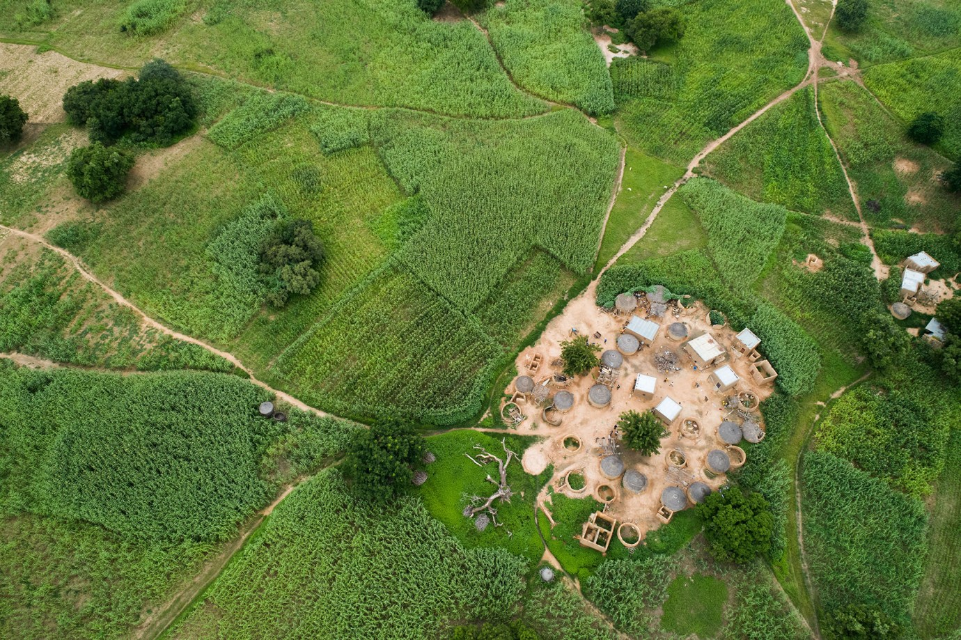 A family compound is surrounded by fertile green farmland in Burkina Faso.