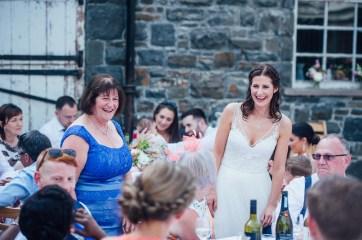 Plas Dinam Wedding Photography-176