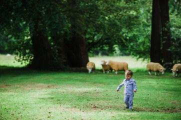 Fairyhill Wedding Photography_-26