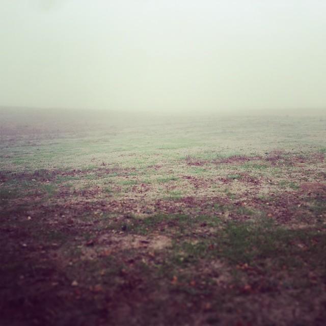 Farming in the cloud.