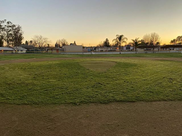 Progress toward Augusta level grass...…