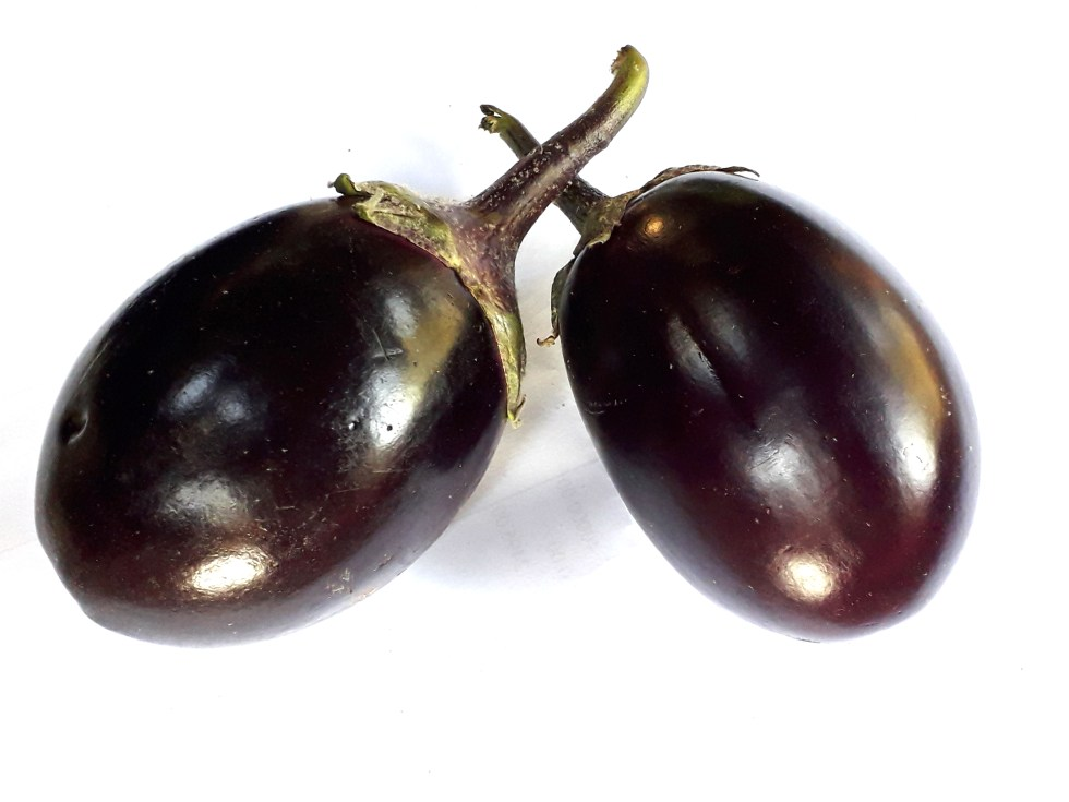 two fresh purple brinjals or eggplants