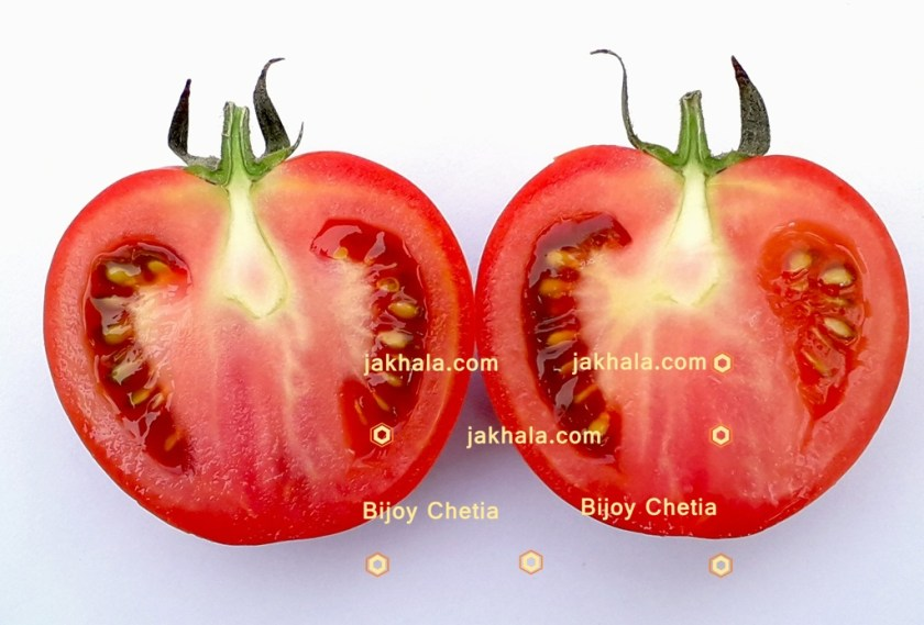 two halves of a tomato with seeds