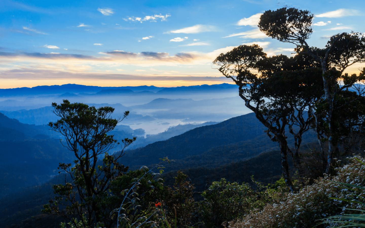 Visiting Sri Lanka? Here Are Five of Its Unmissable Highlights