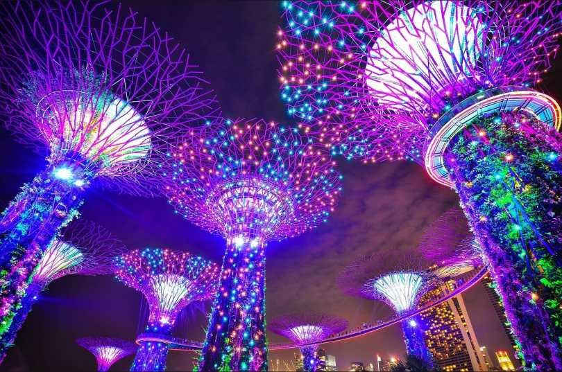 gardens by the bay - singapore image