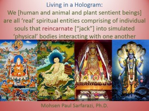 we live in a hologram 2