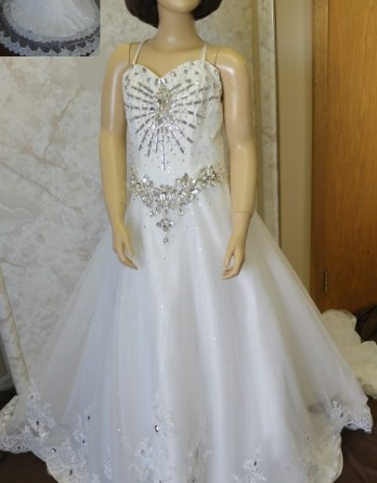 Jeweled Flower girl dress with Watteau Train