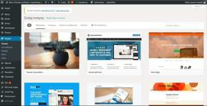 zakładanie bloga - wybierz szablon motyw wordpress