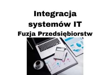 Integracja systemów informatycznych w biznesie - jak przeprowadzić fuzję przedsiębiorstw od strony IT?
