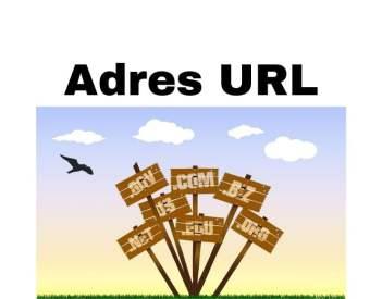 Adres URL strony www, na FB i YouTube - co to jest, jak znaleźć i zmienić?