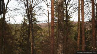 Widok ze szczyty wzniesienia | Rezerwat Krzemienne Góry