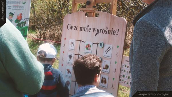 Edukacyjne zagadki dla dzieci | Święto Brzozy