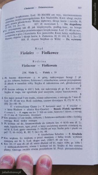Oznaczanie roślin z algorytmu klucza | jakubstrawa.pl