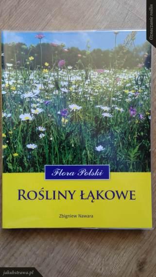 Flora Polski. Rośliny łąkowe | jakubstrawa.pl