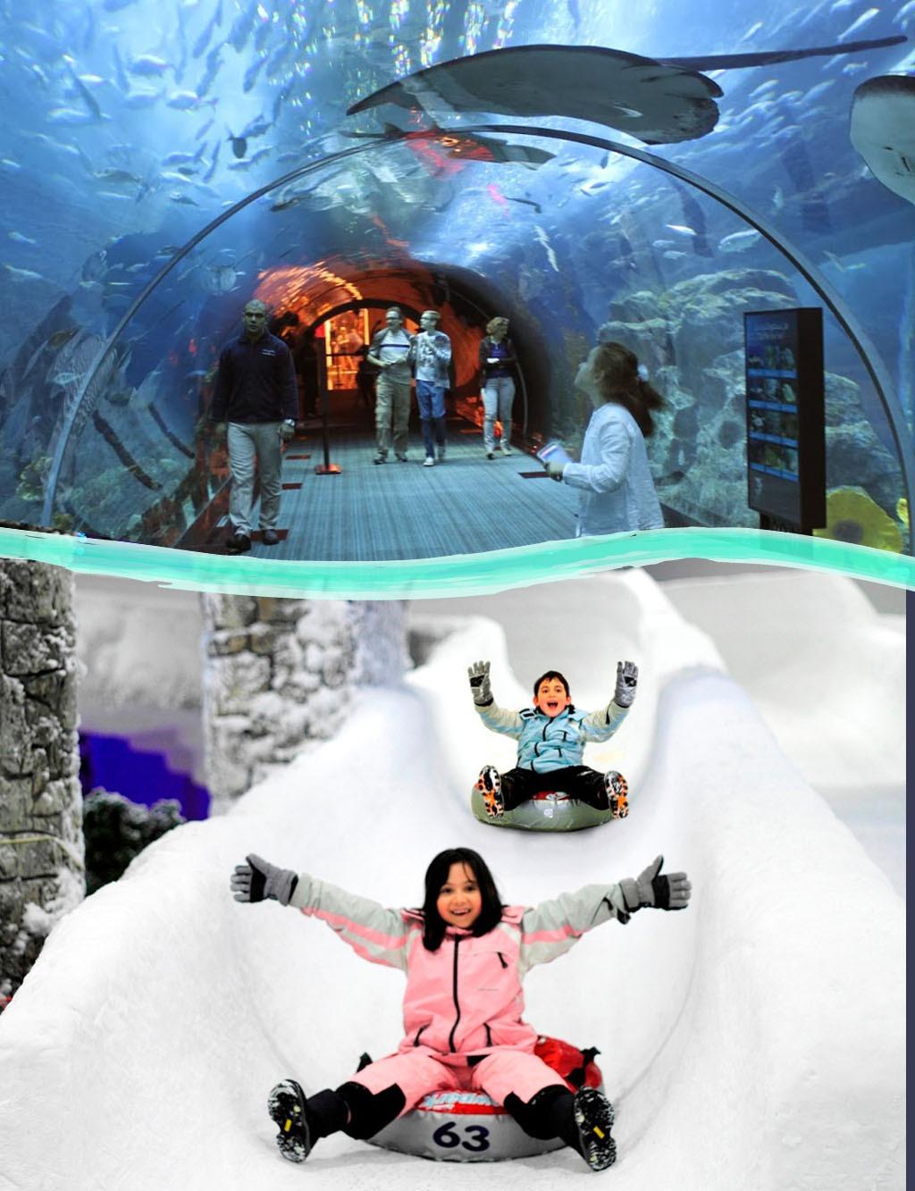 Aquarium & Snowpark Tour