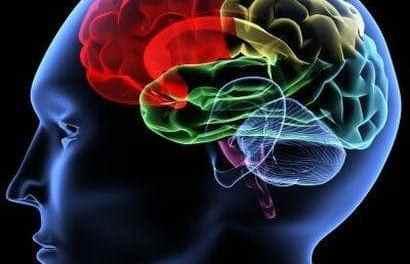 Trucos de neuromarketing para los negocios