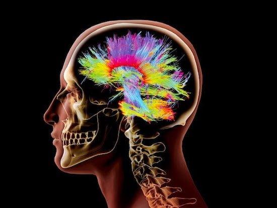la transformación digital cambia nuestro cerebro