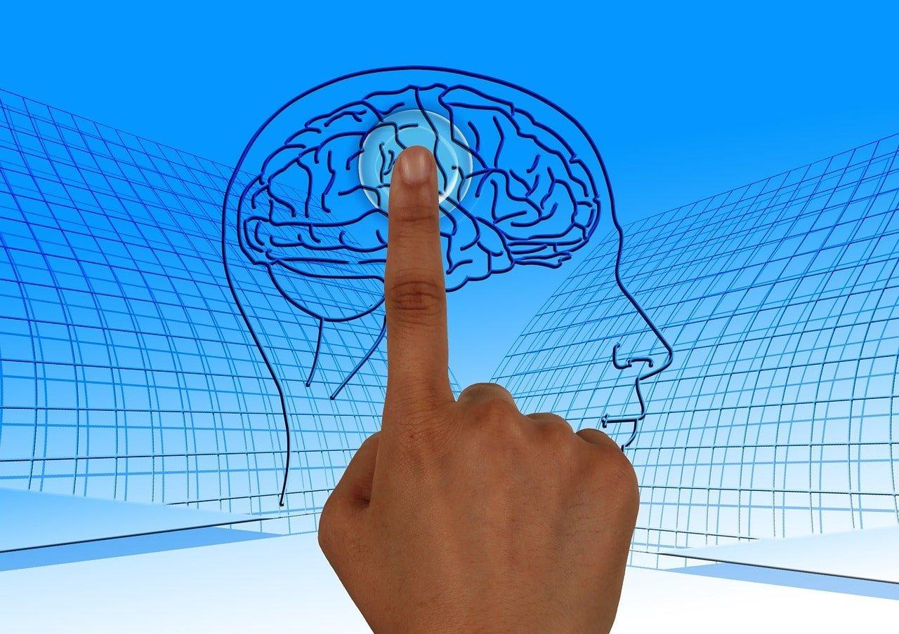 brain, turn on, education