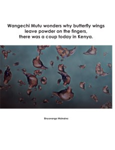"""Download: """"Wangechi Mutu wonders why butterfly wings leave powder on the fingers, there was a coup today in Kenya."""" by Binyavanga Wainaina (pdf)"""