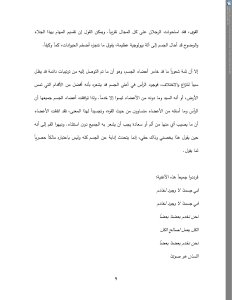 Arabic  Final version(8)