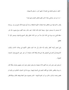 Abdel Qayyoum's Retaliatory Campaign (Arabic original)(1)