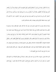 Abdel Qayyoum's Retaliatory Campaign (Arabic original)(3)