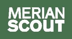Logo MERIA scout