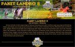landro-8-1024x649
