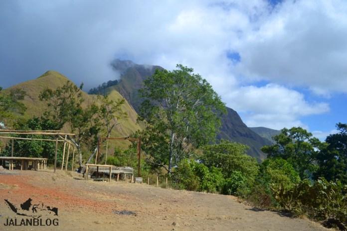 View dari panorama
