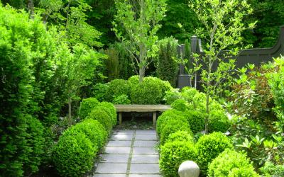 浅谈 Residential Landscaping