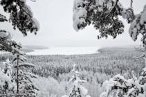 Talvinen maisema Päijänteelle Mäyrävuorelta