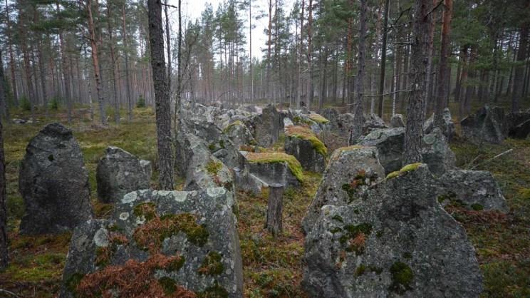 Panssariesteitä metsässä,. Skogby