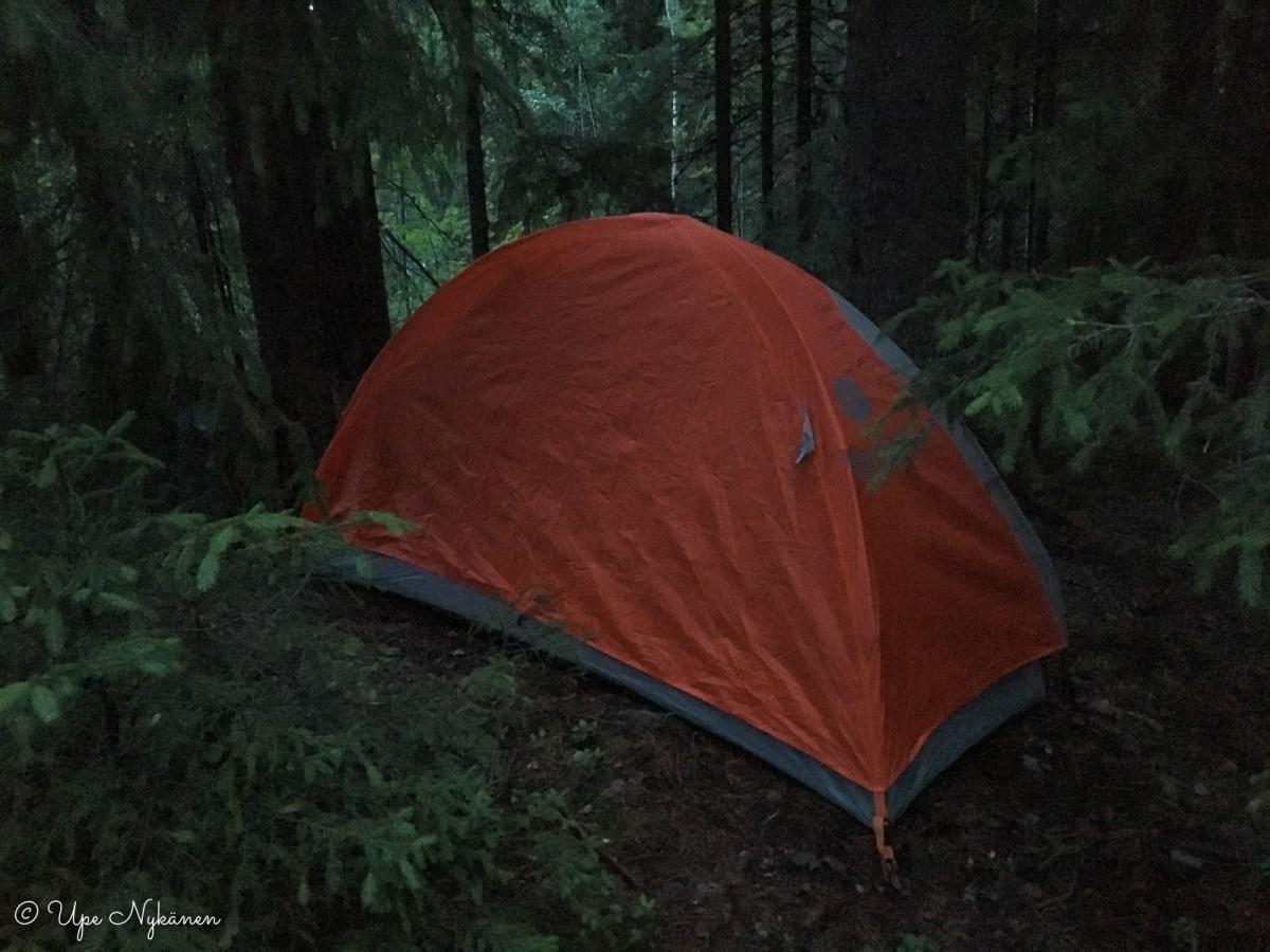 Pystytin telttani kuusten alle Kiljavannummella.