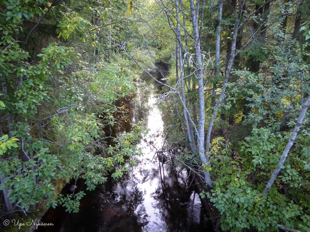 Autiojoen uoma, Tikkakoski