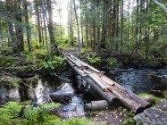Parrusilta puron yli, Tikkakoski