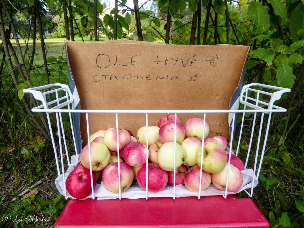 Ole hyvä, ota omenia-kyltti ja korillinen omenia tien varressa, Saarijärvi