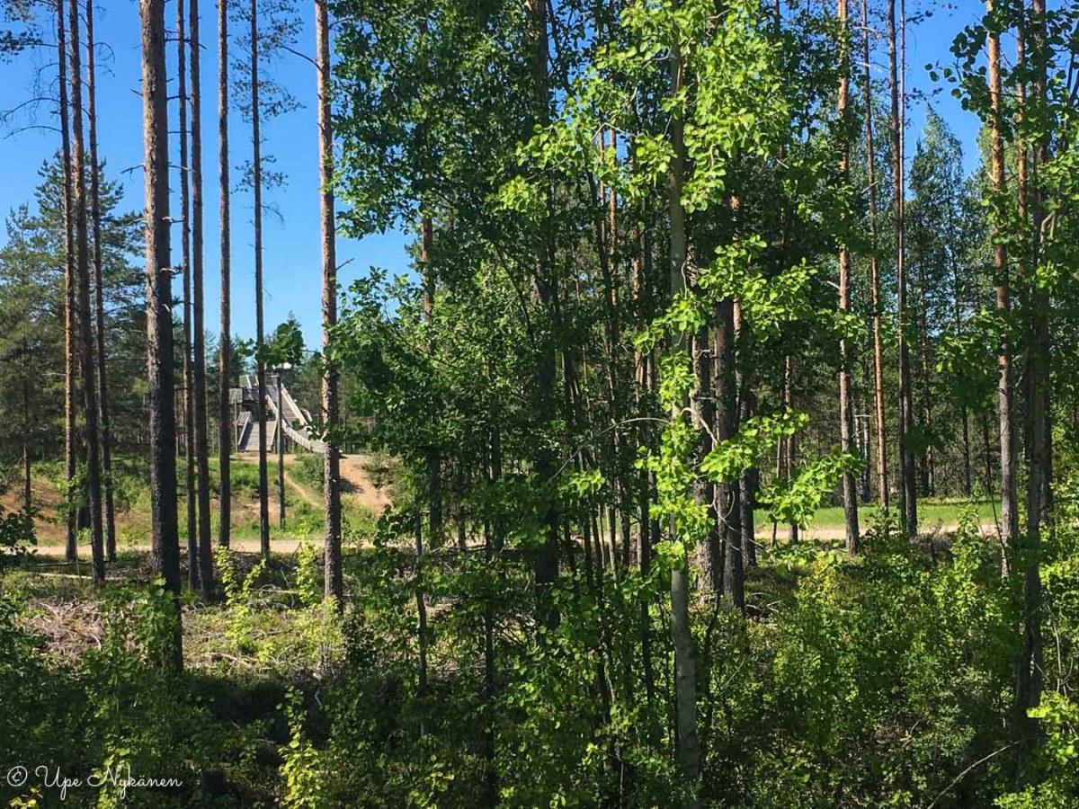 Puiden takaa tieltä näkyy Lehtomäen liikuntakeskuksen mäkitorni, Pulkkila.