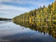 Täydelisen tyyni Iso Helvetinjärvi, rannan puut osin jo kellastuneet.