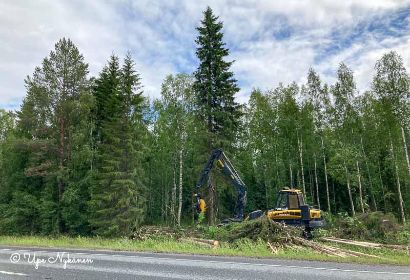 Nelostien toisella puolella metsäkone kaatamassa isoa kuusta.