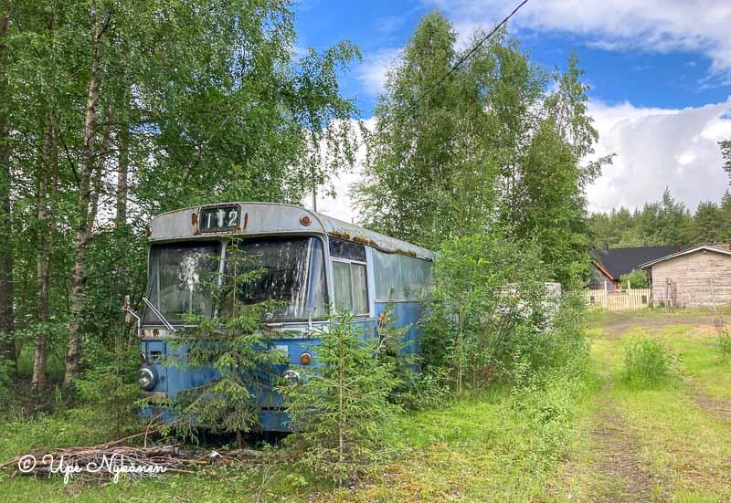 Sininen vanha linja-auton romu, jonka ympärillä kasvaa puita.