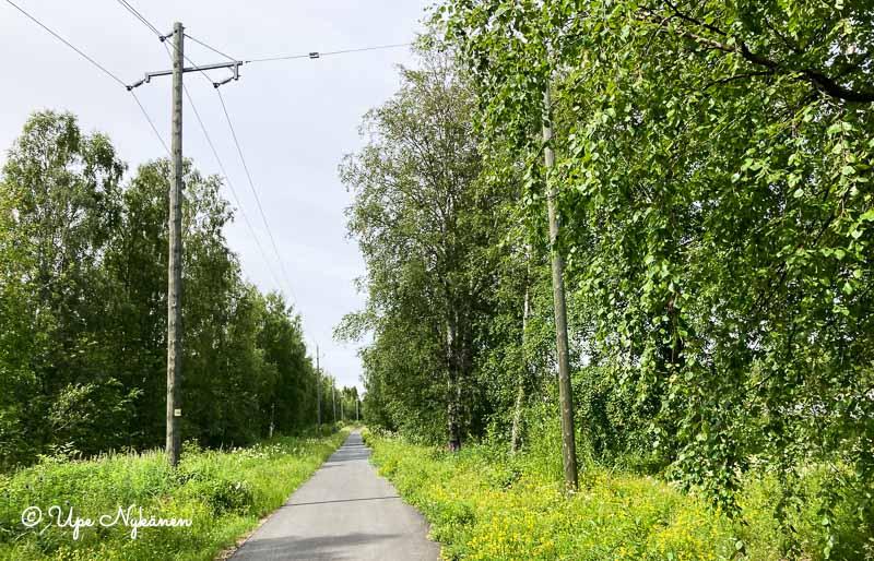 Vehreä, suora lehtipuiden reunustama kevyen liikenteen väylä sähkölinjan vieressä.