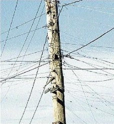 A Jamaica Gleaner photo of wires flung onto JPS poles to steal electricity (Source: Jamaica-Gleaner.com