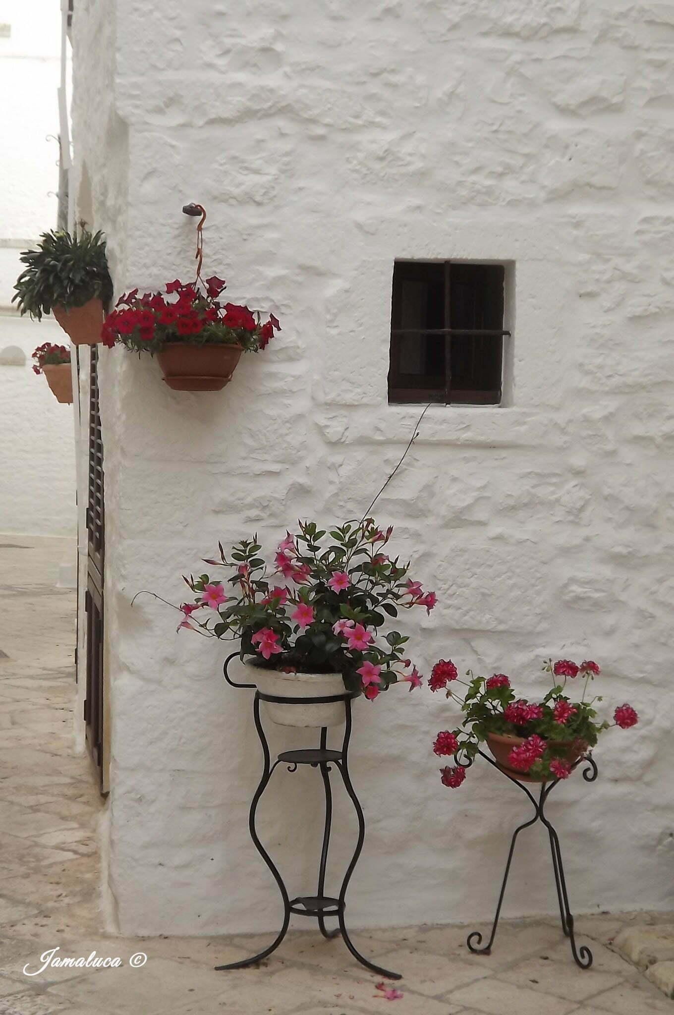 """I """"borghi più belli"""" della Valle d'Itria: Locorotondo e Cisternino"""