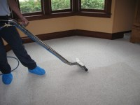 The Importance of Hiring Professional Carpet Cleaning ...