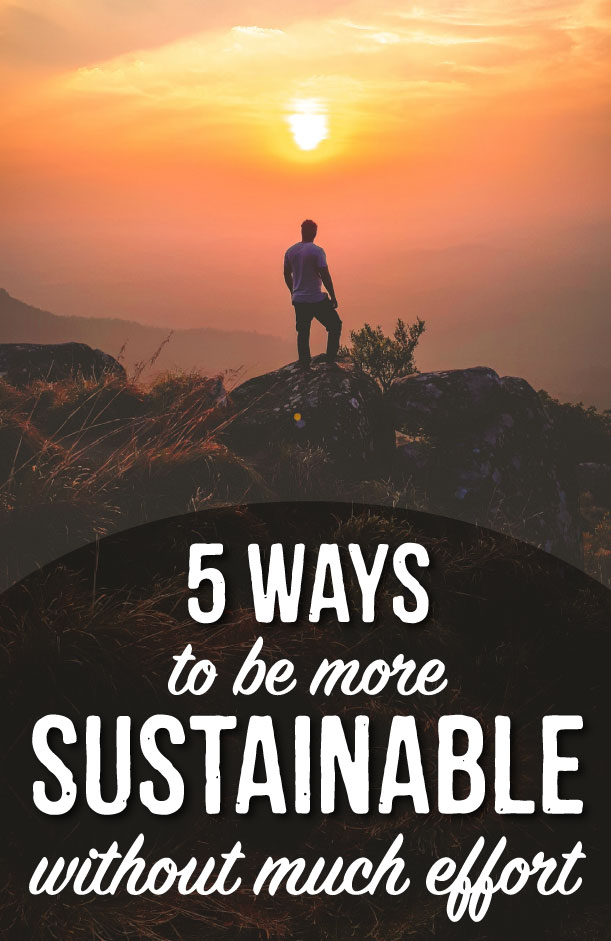 how to be sustainable without much effort