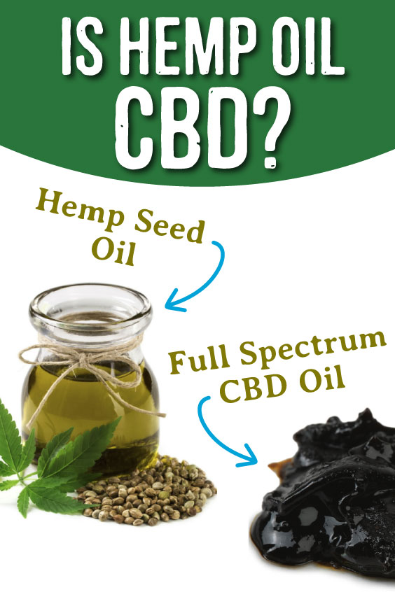 is hemp oil cbd?