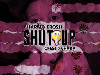 Bharmo Frosh Ft Crest & Chada – Shut up (Blaqbonez cover)
