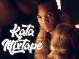 MIXTAPE: Kjv Dj James Ft. Tekno - The Kata Mix